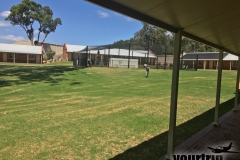2017-01-11_Australien_mk_00034