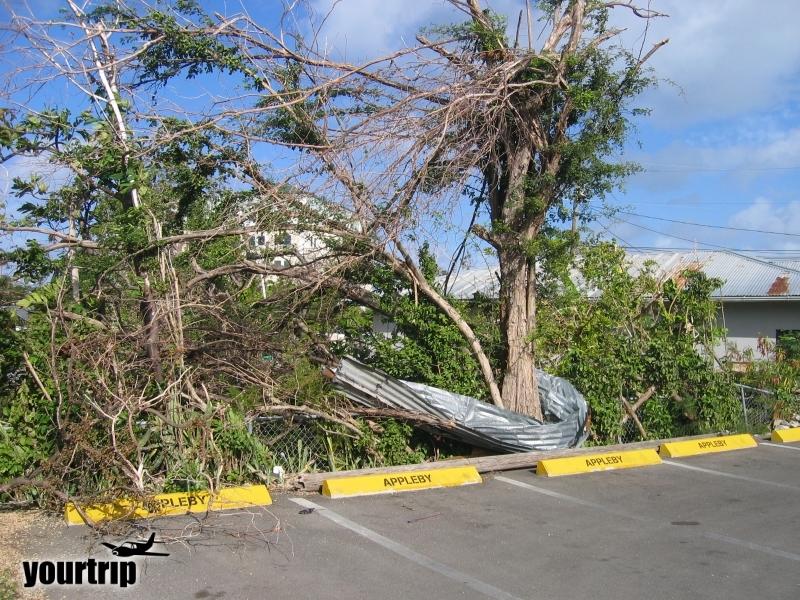 2004-12-30_aida_cayman-island_023