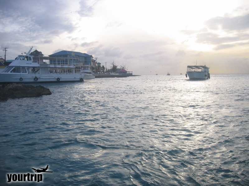2004-12-30_aida_cayman-island_145