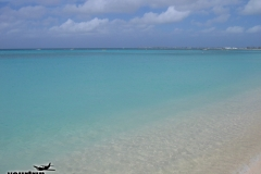 2004-12-30_aida_cayman-island_055