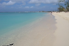 2004-12-30_aida_cayman-island_054