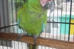 2004-12-27_aida_cozumel_cancun_043