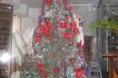 2004-12-27_aida_cozumel_cancun_050