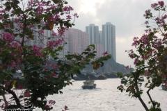 2012-11-20_china-reise_004160