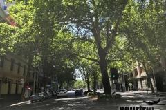 2017-01-08_Australien_mk2_0421