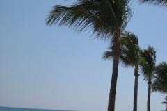 2009-03-01_florida-bahamas_1263