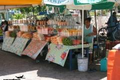 2003-07_urlaub_florida+mexico_0998